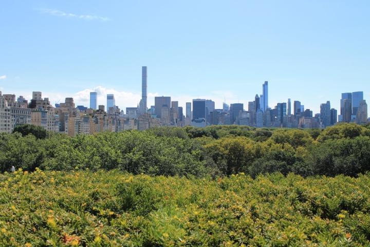 City Series: NYC